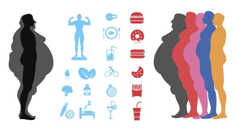 obesity-habits
