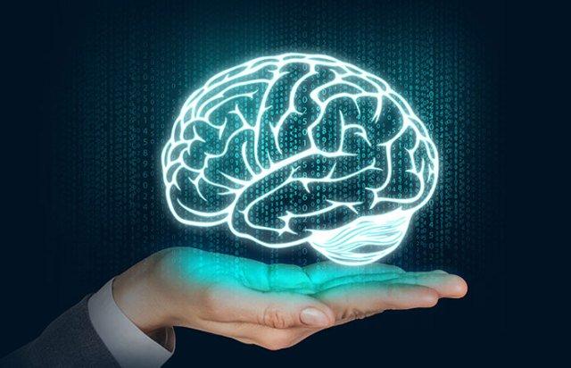 piracetol-brain.function