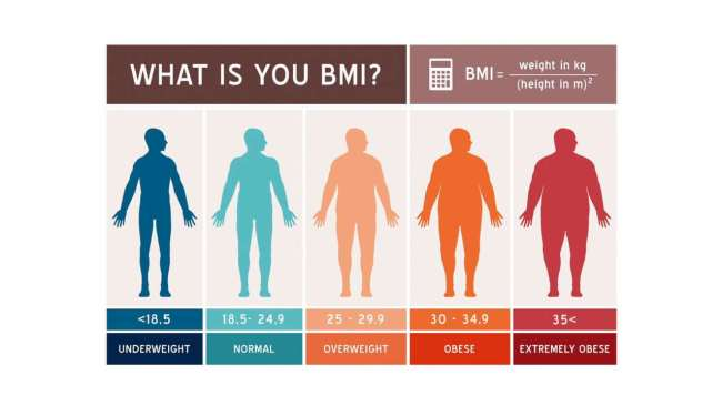 what.is.your.bmi