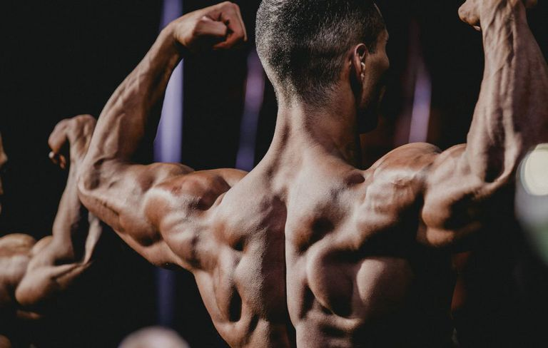 testofuel-bodybuilding-muscle.bulking
