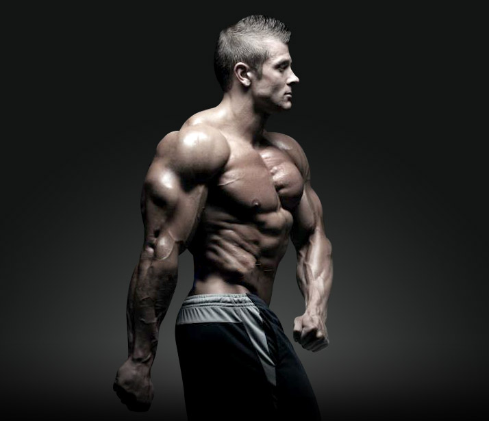 bodybuilding-muscles.body