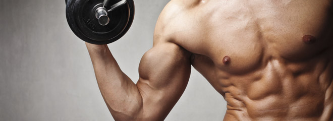 bodybuilding.supplement-who.should.use.it