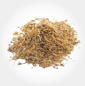 nettle-root