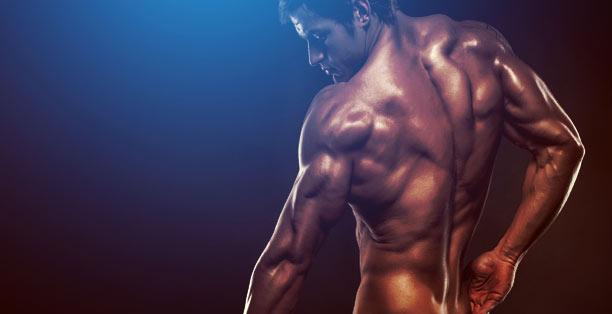 GVT-muscle-gain