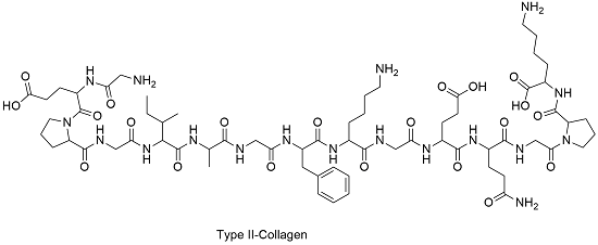 collagen.chemical.structure-type2