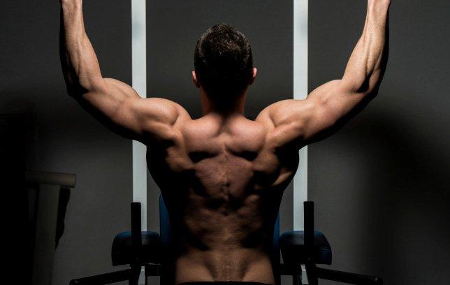 body-strength-bodybuilding.training