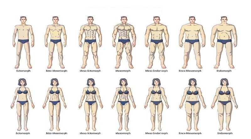 Body-Types-all.categories