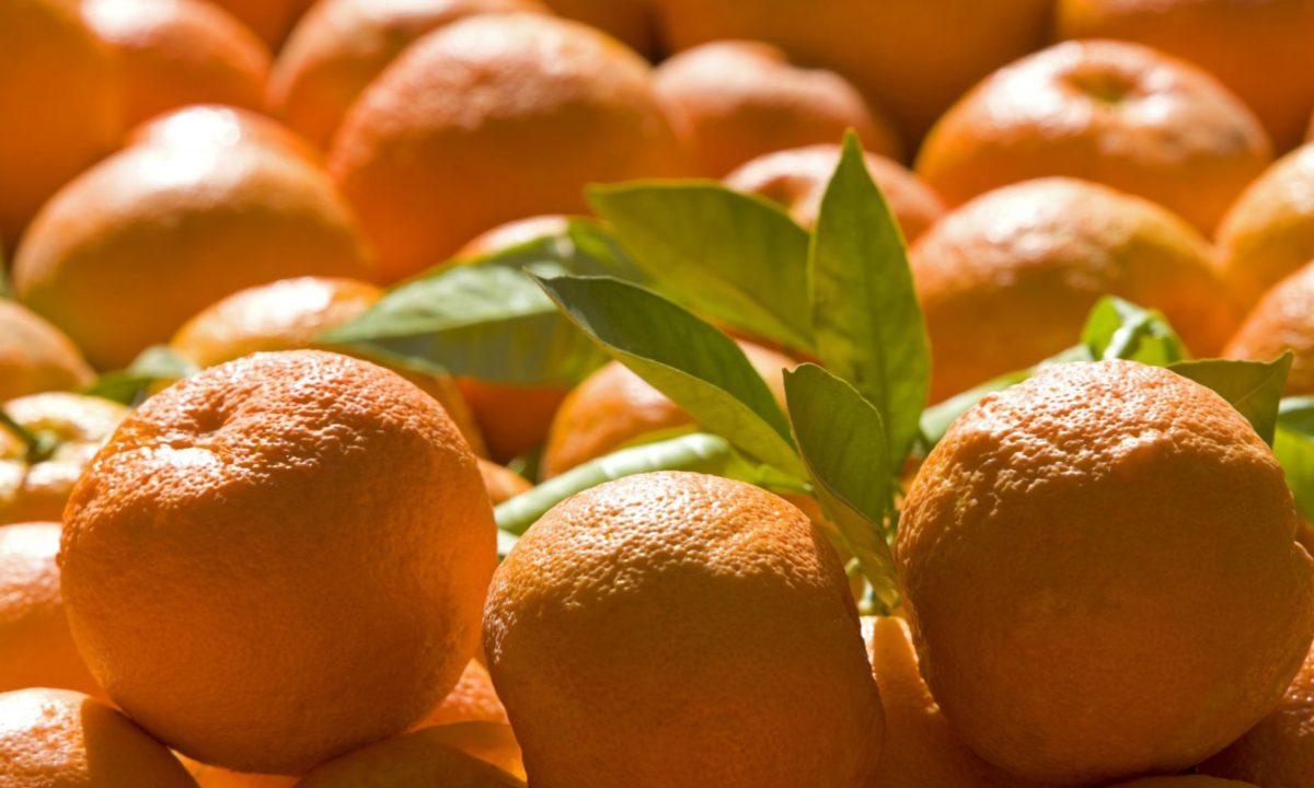 bitter-orange-weight.loss.supplement