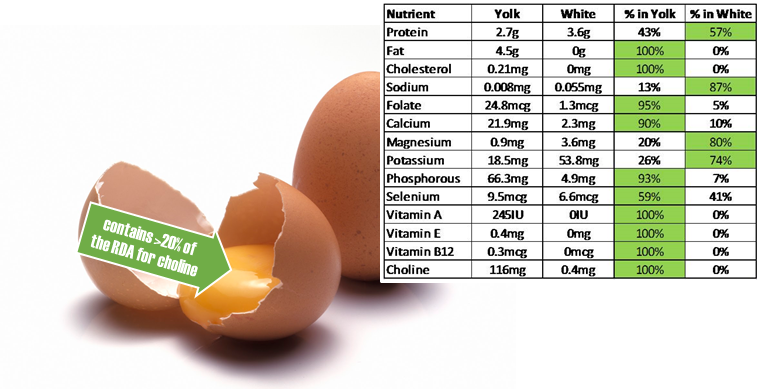 egg-nutritional-benefits