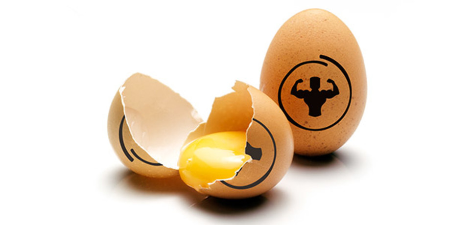egg.protein-for-training